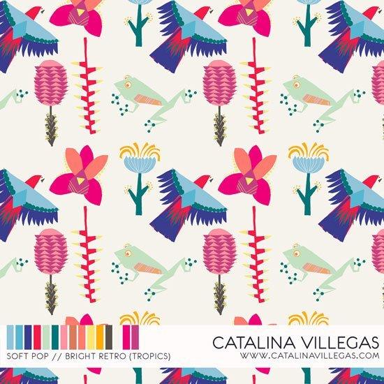 Catalina 25 Pop Top – Name
