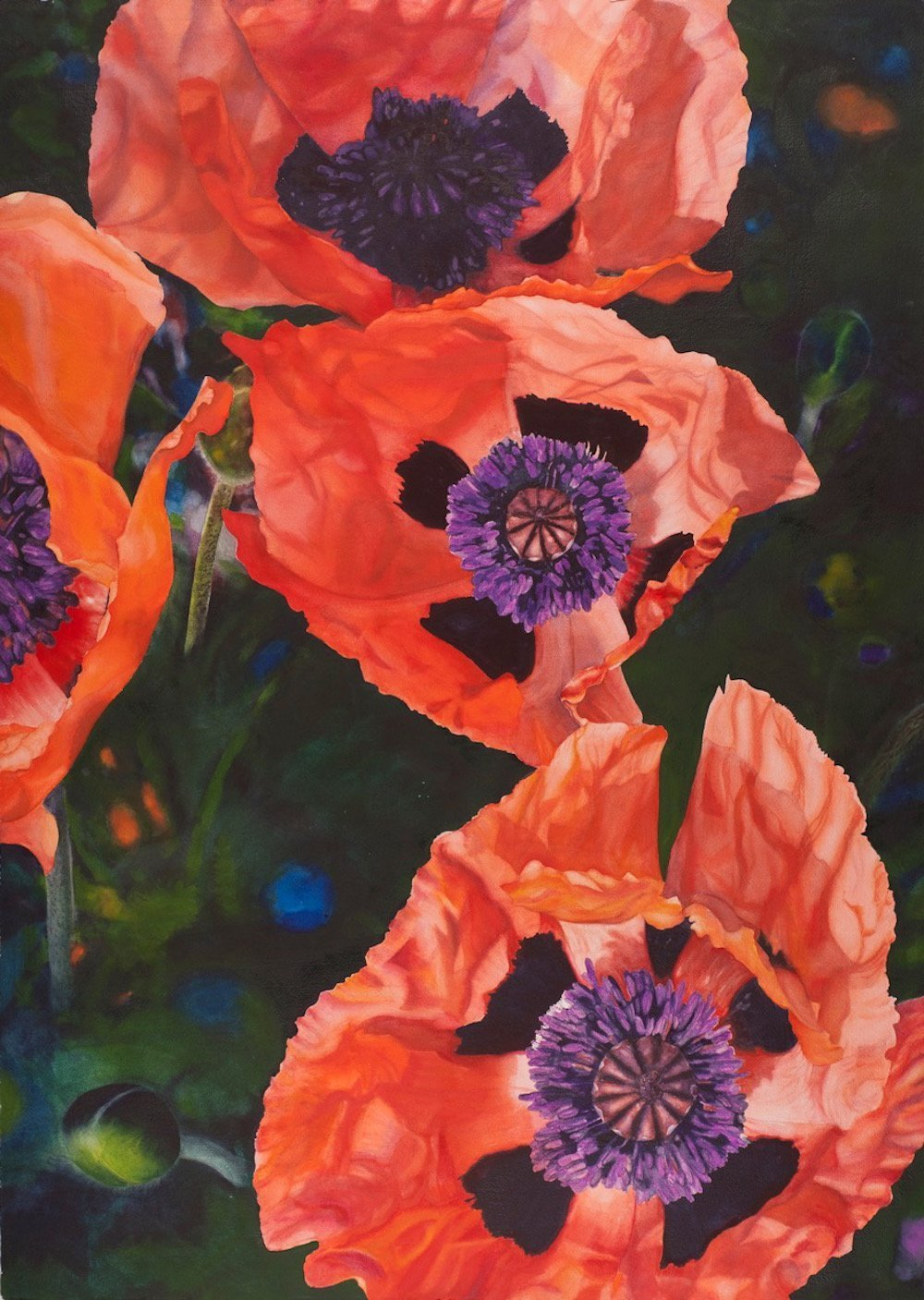 """LauraBethmann_Living_Connection.Poppies_Watercolor_26""""x42"""""""
