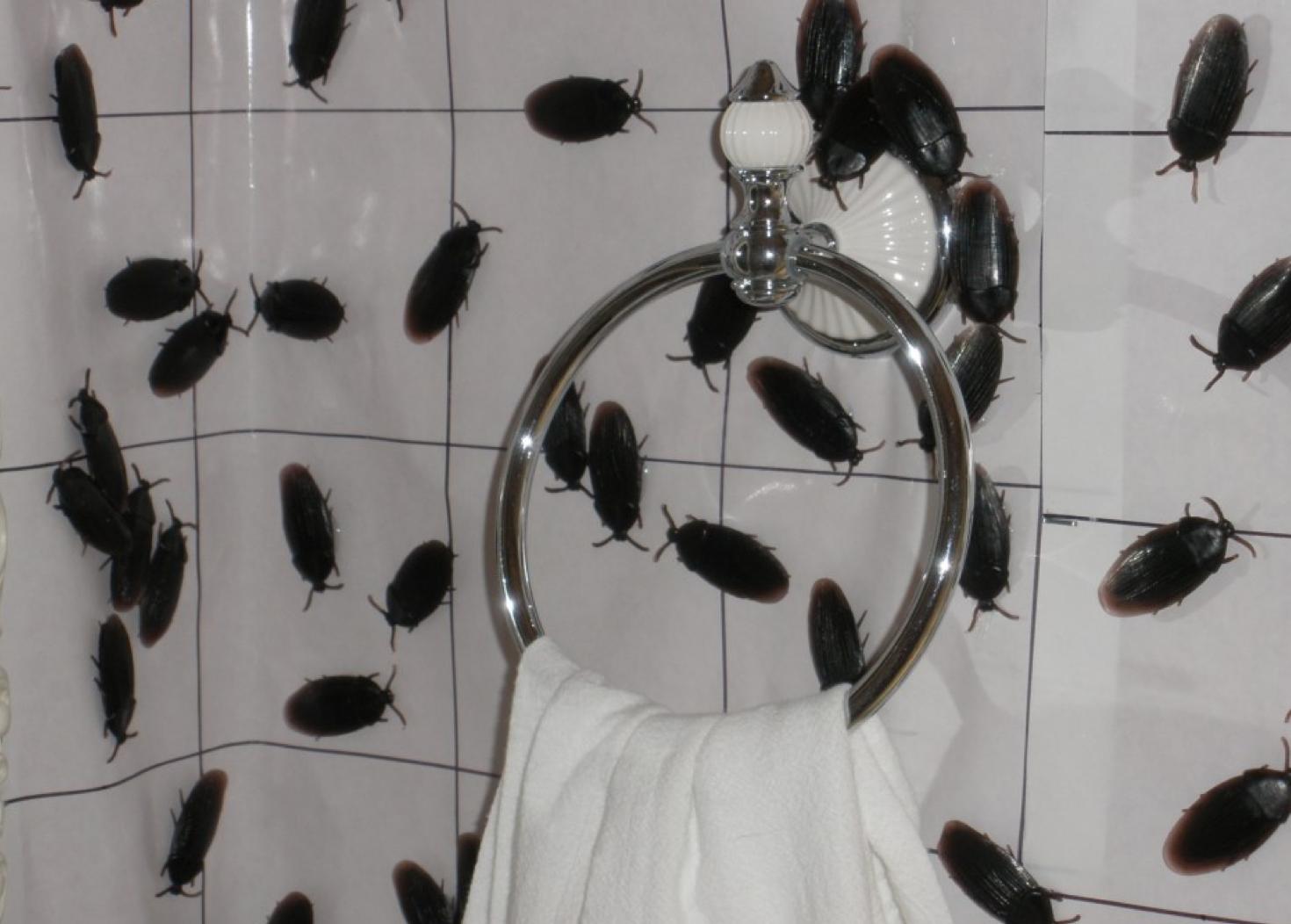 Denydesigns Halloween Special Bizarre Bathroom Bits Make It In Design